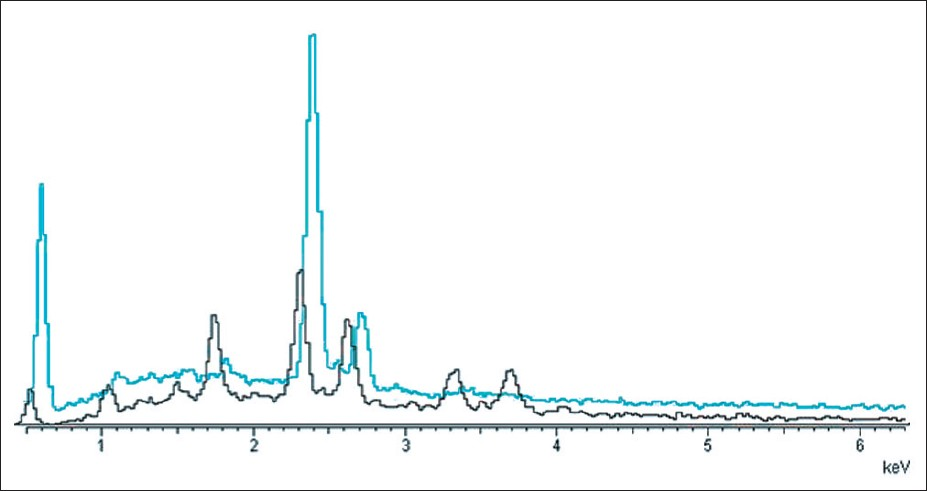 Figure 4: X-ray microanalysis. Severe decrease of sulfur contents near to the trichoschisis areas (black line)